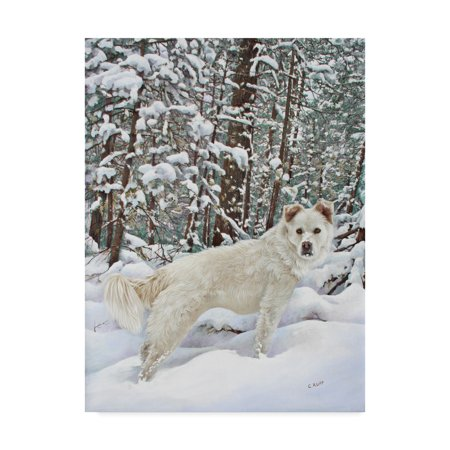 Trademark Fine Art 'I Love Snow' Canvas Art by Carol J Rupp (Gr8 Art)