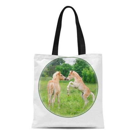 LADDKE Canvas Tote Bag Pony Haflinger Horses Cute Foals Rearing Haflingerhorse Colt Horselover Reusable Handbag Shoulder Grocery Shopping - Colts Purse