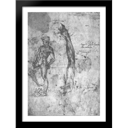 Study for an arm of the marble David and the figure of the bronze David 28x38 Large Black Wood Framed Print Art by Michelangelo