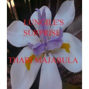 Lungile's Surprise - eBook