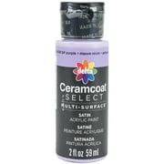 Ceramcoat Select Multi-Surface Paint 2oz-Grape Purple
