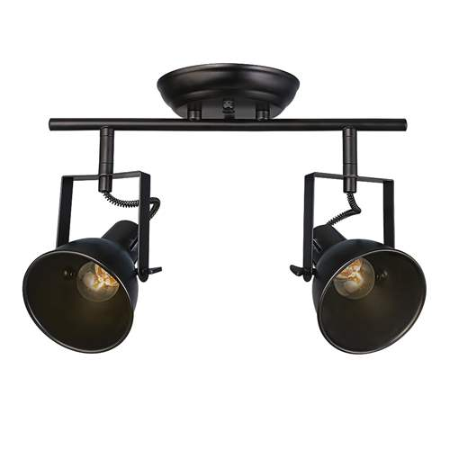 LNC Semi Flush Mount Adjustable Track Lighting 2-light Ceiling Light by LNC