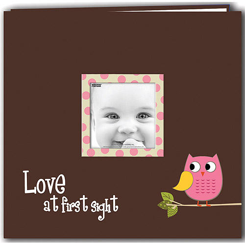 "Baby Owl Printed Design Postbound Scrapbook Album 12""X12""-Blue"