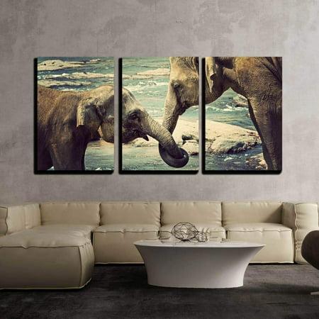 wall26 - Elephants Kissing Sri Lanka - Canvas Art Wall Decor - 16