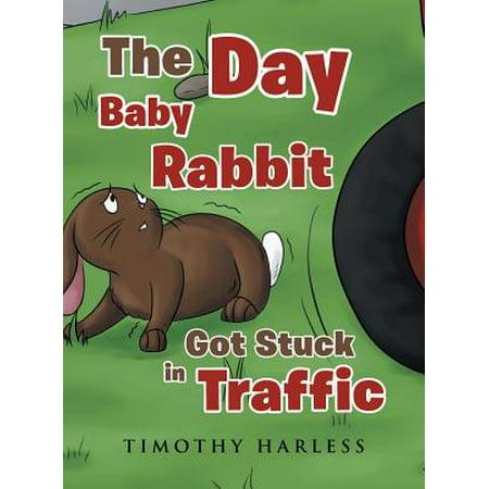 The Day Baby Rabbit Got Stuck in Traffic