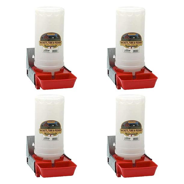 4 Pack Little Giant BPW4 1-Gallon Impact Resistant Translucent Polyethylene Piglet Waterer