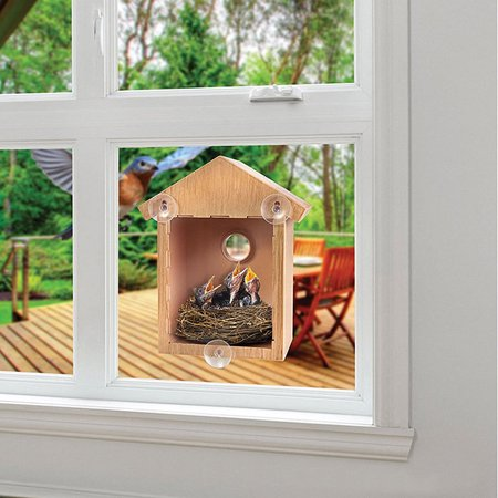 Spy House See Through Two way Mirrored Bird House - Suction Cup Window Mounted Bird Nesting Box
