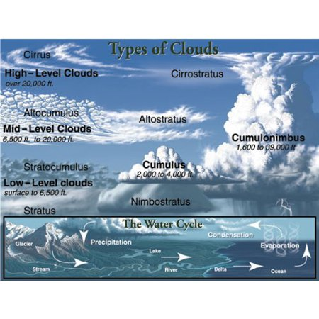 Types Of Clouds Chart  Grades   4 5 6 7 8 By Brand  Mark Twain Media