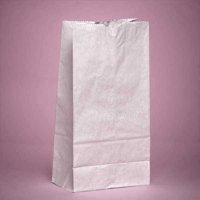 Large 6-1/8 x 4 x 12-3/8 inches White Kraft Paper Lunch Grocery Bags, 100 pack