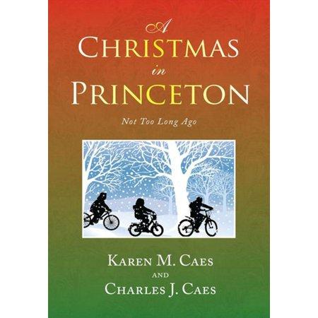 A Christmas in Princeton - eBook ()
