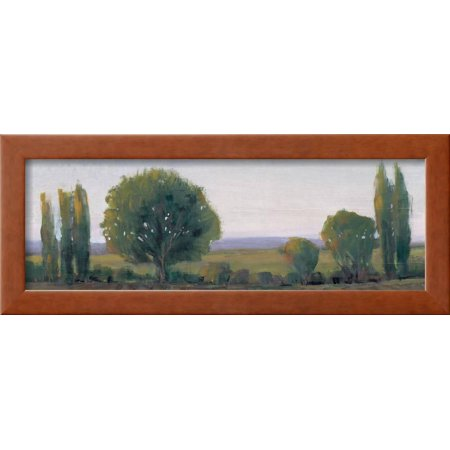 Panoramic Treeline I Framed Print Wall Art By Tim OToole - Walmart.com