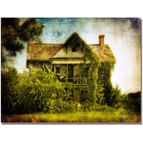 "Trademark Fine Art ""Ivy House"" Canvas Wall Art by Lois Bryan"