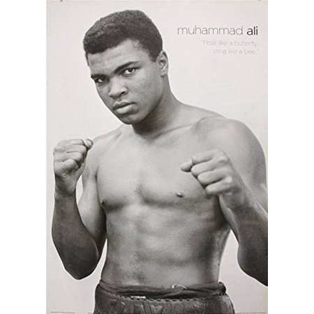 Boxing Legend (Rare Muhammad Ali Float like a butterfly sting like a bee 34x24 Photograph Art Print Poster Boxing Legend The Greatest)