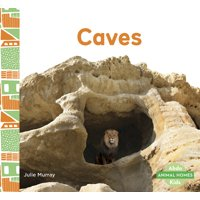 Caves (Paperback)