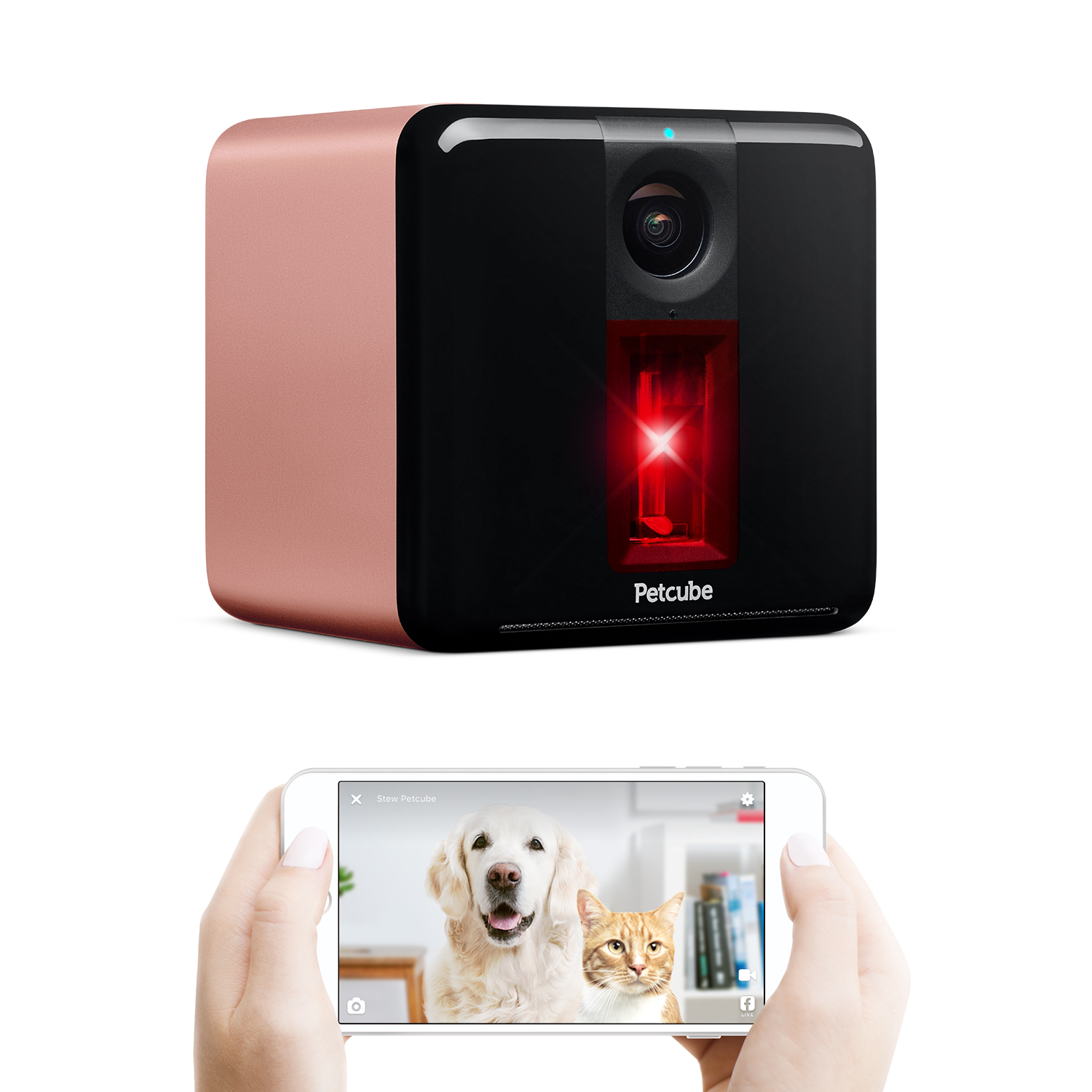 Petcube Play Rose Gold