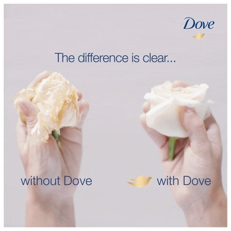 Best Dove Nutritive Solutions Daily Moisture Conditioner, 12 oz deal