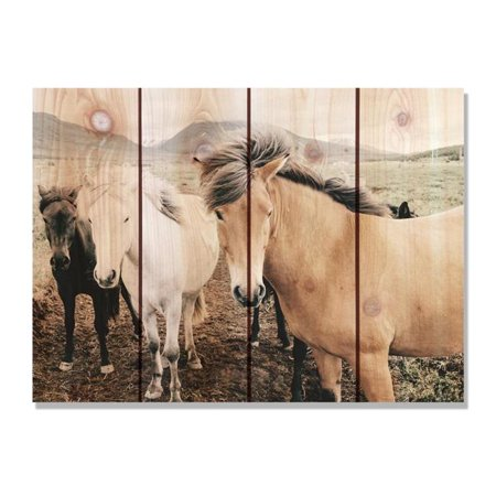 Day Dream TA3324 33 x 24 in. Three Amigos Inside & Outside Cedar Wall Art - image 1 de 1