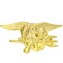United States Navy Seals Trident Gold Lapel Pin