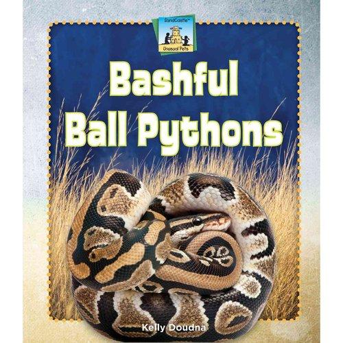 Bashful Ball Pythons