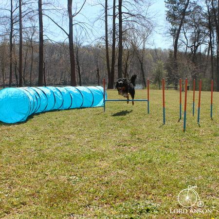 Lord Anson Dog Agility Set - Dog Agility Equipment - 1 Dog Tunnel, 6 Weave Poles, 1 Dog Agility Jump - Canine Agility Set for Dog Training, Obedience, Rehabilitation