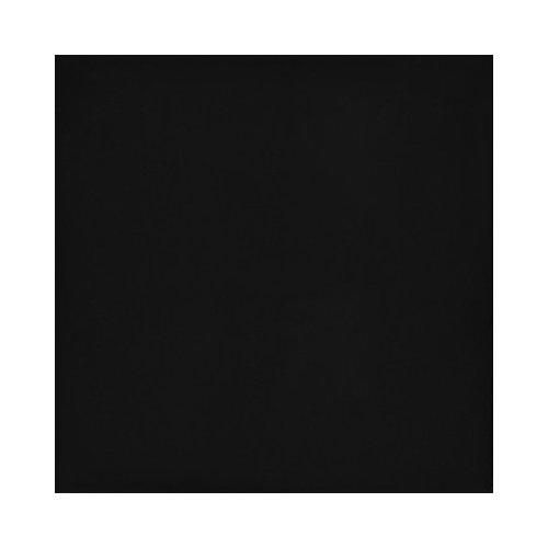 Emser Tile Times Square 24'' x 24'' Porcelain Field Tile in Black