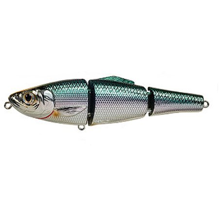 Koppers fishing tackle livetarget blueback herring for Walmart with live fish near me