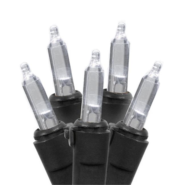 Queens of Christmas Conical Battery Operated 50 Count 5mm Warm LED String Light Set on White Wire