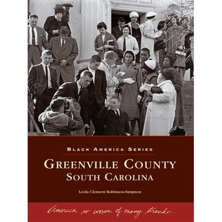 Greenville County, South Carolina - - Party City Greenville South Carolina