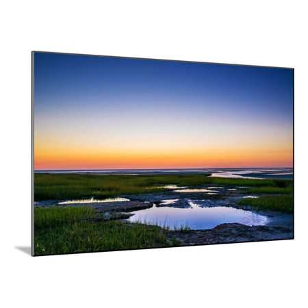 Cape Cod Wall Mount - Salt Marsh Tidal Pools at Low Tide, Boat Meadow Beach, Eastham, Cape Cod, Massachusetts, USA Wood Mounted Print Wall Art By Mira
