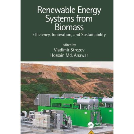 Renewable Energy Systems : Efficiency, Innovation and