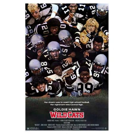 Wildcats Poster Movie  27X40