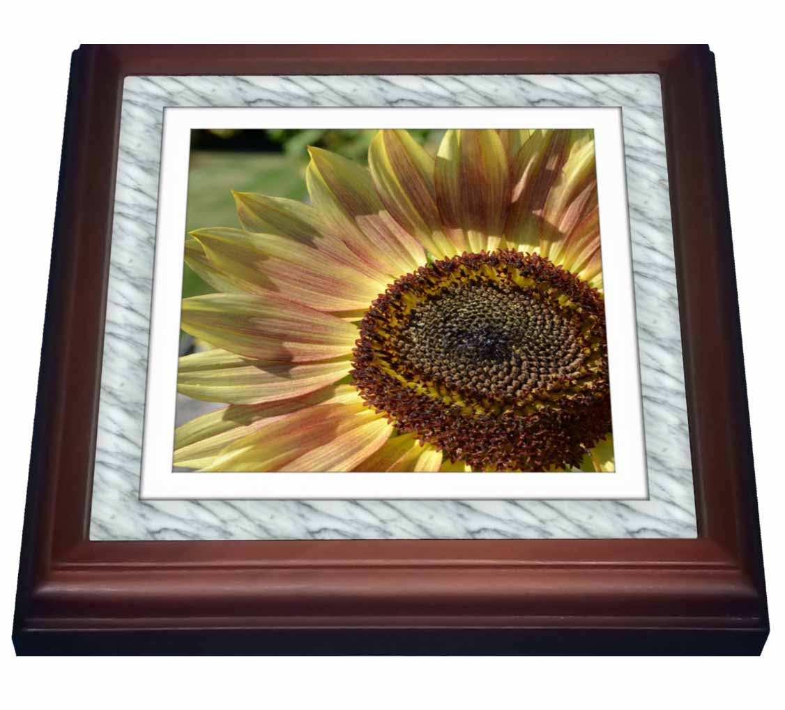 3dRose White Marble print Frame- Sunflower- Flowers- Photography, Trivet with Ceramic Tile, 8 by 8-inch