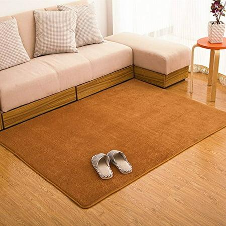 FADFAY Kahiki Rugs Coral Fleece Rug for Livingroom Memory Foam Rugs ...