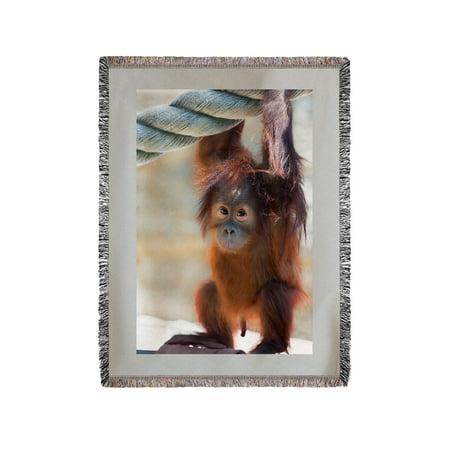 Baby Orangutan - Lantern Press Photography (60x80 Woven Chenille Yarn  Blanket)