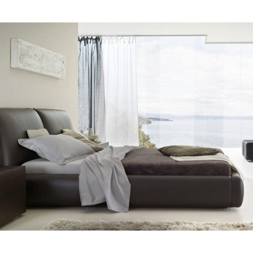 Pavo Platform Bed - Brown