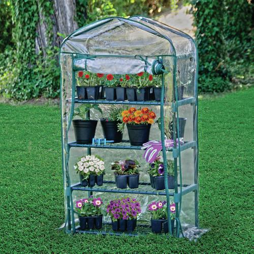 Bond Bloom Greenhouse, Small