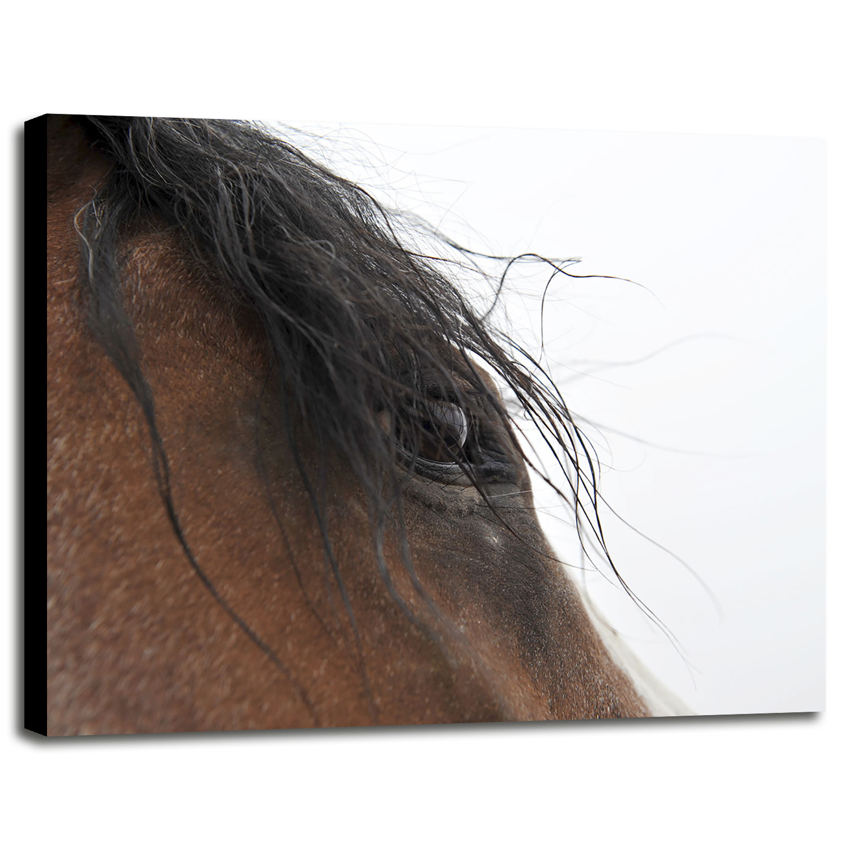 c8e6be312ace Whips eye amasmi print jpg 1500x1500 Floating frames for canvas