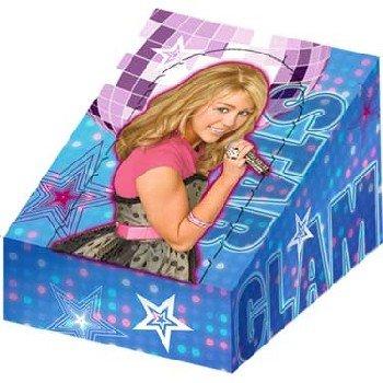 Hannah Montana 'Rock the Stage' Favor Boxes - Hannah Montana Treat Bags