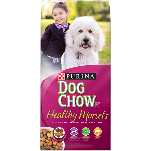 Purina Dog Chow Tender and Crunchy Dog Food 32 lb. Bag