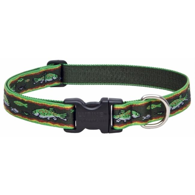 Lupine Inc 1in. X 12in.-20in. Adjustable Trout Design Collar For Medium & Large Dogs 0 - image 1 of 1
