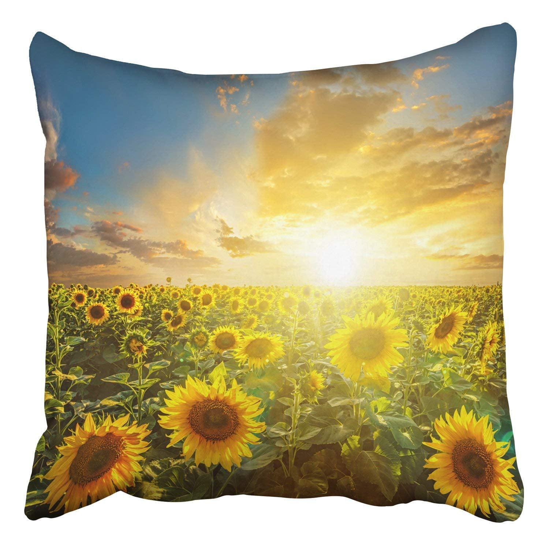 Wopop Summer Landscape Beauty Sunset Over Sunflowers Field Pillowcase Cover Cushion 18x18 Inch Walmart Com Walmart Com