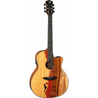 Luna Guitars VISTA EAGLE Vista Eagle Tropical Wood Koa Back w/ Case