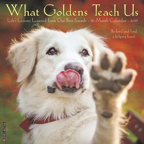 Willow Creek Press 2019 What Goldens Teach Us Wall Calendar