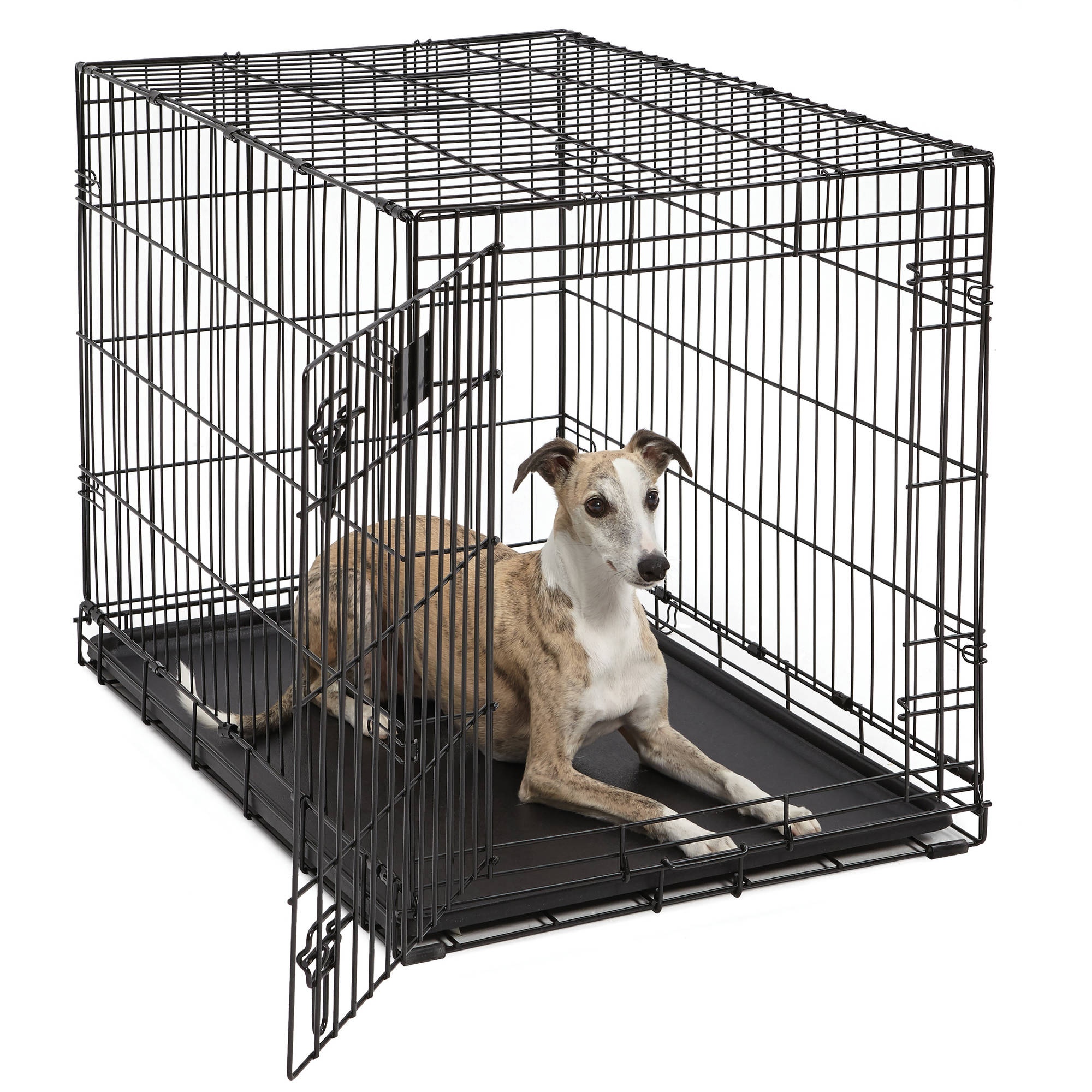 Life Stages Single Door Folding Metal Dog Crate