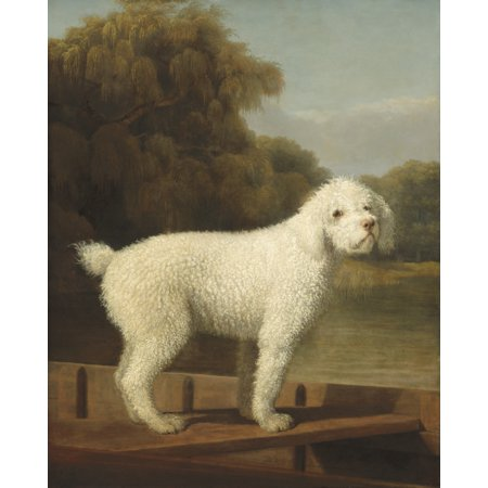 White Poodle In A Punt By George Stubbs 1780 British Painting Oil On Canvas Self-Taught Painter Stubbs Was Best Known For His Animals Engravings And Paintings Poster