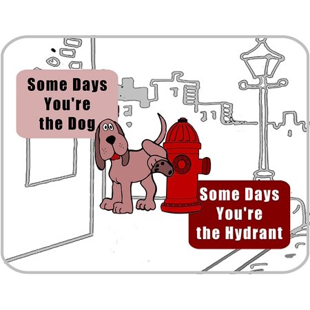 10 Inch Hydrant - PCSCP Some Days Your the Dog, Some Days you`re the Hydrant (B & W) 11 inch by 9.5 inch Laminated Funny Sign