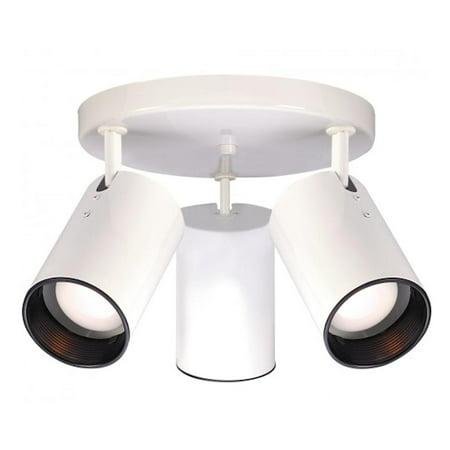 Nuvo Lighting  76/416  Ceiling Fixtures  Indoor Lighting  Semi-Flush  (Indoor Lighting)