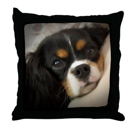 CafePress - Cavalier King Charles Spaniel - Decor Throw Pillow -