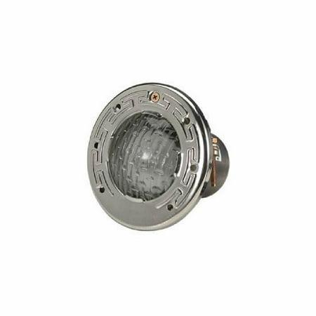 Pool Light, Pentair AquaLight,115v,100W,100ft Cord,SS Face