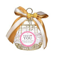 Hohaski Hollow Bird Cage Wedding Party Gift Box Container Tinplate Candy Chocolate Boxes